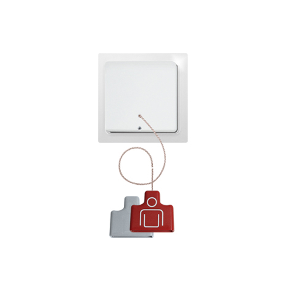 Eltako EnOcean FZS65-wg Pull Switch pure white